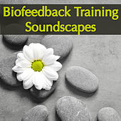 Biofeedback Training Soundscapes – Ambient Music for Biofeedback, to Improve Health & Performance and Exercise Your Brain de Various Artists