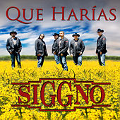 Que Harias (Single) by Siggno