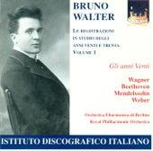 Orchestral Music - Beethoven, L. Van / Mendelssohn, Felix / Weber, C.M. Von  (Studio Recordings - 1920's and 30's, Vol. 1) (Walter) (1924-1927) de Bruno Walter