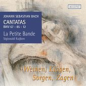 Bach: Cantatas, Vol. 11 by Various Artists