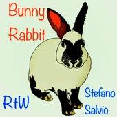 Bunny Rabbit (Radio Edit) von R T W