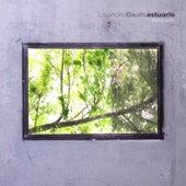 Estuario by Lisandro Baum
