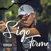 Sigo Firme (feat. AR) von Don B