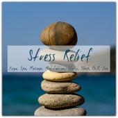 Stress Relief: Yoga, Spa, Massage, Meditation, Study, Sleep, Chill, Zen by Various Artists