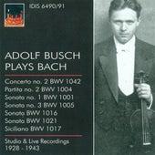 Bach, J.S.: Violin Music - Bwv 1001, 1004, 1005, 1016, 1017, 1021, 1042 (Busch) (1928-1943) von Various Artists