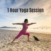 1 Hour Yoga Session de Yoga Chill