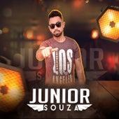 Status de Largado de Junior Soouza