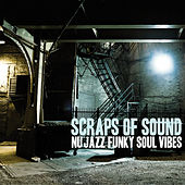 Scraps of Sounds (Nu Jazz Funky Soul Vibes) von Various Artists