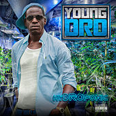 Everything Cheese von Young Dro