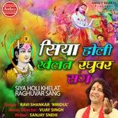 Siya Holi Khelat Raghuvar Sang de Ravi Shankar