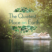 The Quietest Place on Earth de Various Artists