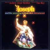 Joseph And The Amazing Technicolor Dream Coat by Original Broadway Cast of 'Joseph and the Amazing Technicolor Dreamcoat'