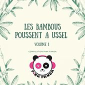 Les bambous poussent à Ussel, Vol. 1 de Various Artists