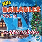 Hits Bailables 20 años de Éxitos de Various Artists