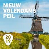 Nieuw Volendams Peil 2019 by Various Artists