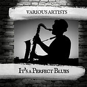 It's a Perfect Blues von Various Artists
