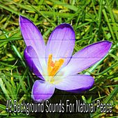 49 Background Sounds for Natural Peace von Massage Therapy Music