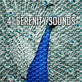 41 Serenity Sounds de Study Concentration