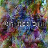 73 Calming Recordings for a Peaceful Mind von Entspannungsmusik