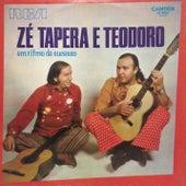 Em Ritmo de Sucesso von Zé Tapera