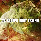 73 Sleeps Best Friend von Rockabye Lullaby