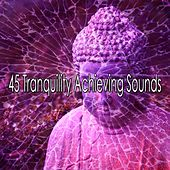 45 Tranquility Achieving Sounds von Massage Therapy Music