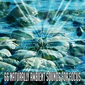 66 Naturally Ambient Sounds for Focus de Nature Sounds Artists