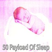 50 Payload of Sleep by Lullaby Land