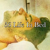 56 Life in Bed de White Noise Babies