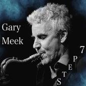 Step 7 by Gary Meek