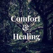 Comfort & Healing by Kyle Lovett