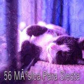 56 Musica Para Siesta by Rockabye Lullaby