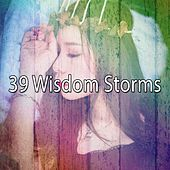 39 Wisdom Storms by Rain Sounds and White Noise
