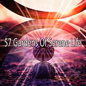 57 Gardens of Serene Life by Yoga Workout Music (1)