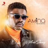 Amina (Ghenda Remix) de Ariel Sheney
