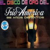 El Disco de Oro del Trío América 35 Años de Éxito de Trio América