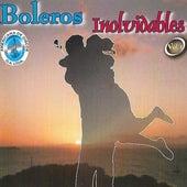 Boleros Inolvidables, Vol. 1 de Various Artists