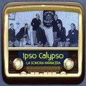 Ipso Calypso de Various Artists
