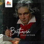 Beethoven Collection de Various Artists