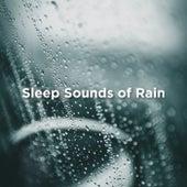 Sleep Sounds Of Rain by Relaxing Rain Sounds