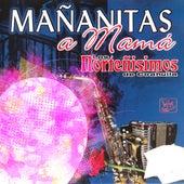 Mañanitas A Mamá de Los Norteñisimos De Coahuila