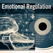 Emotional Regulation for the Radio by DJ Jorge Gallardo