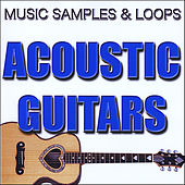 Acoustic Guitar Samples and Loops by Musical Instrument Samples and Loops