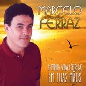 A Minha Vida Entrego em Suas Mãos by Marcelo Ferraz