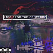 Life from the Cemetery by Unbound