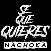 Se Que Quieres by Nachoka