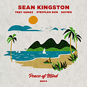 Peace of Mind (Remix) by Sean Kingston