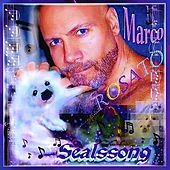 Sealssong by Marco Rosato