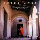 Beautiful Disrepair de Peter More