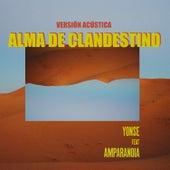 Alma de Clandestino (Versión Acústica) de Yonse